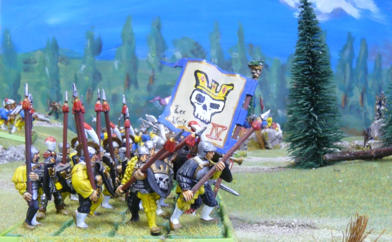 Warhammer Fantasy, Galerie de Batailles - Page 4 P1210228