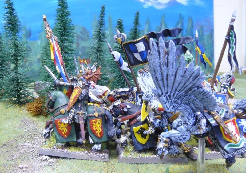 Warhammer Fantasy, Galerie de Batailles - Page 4 P1210229
