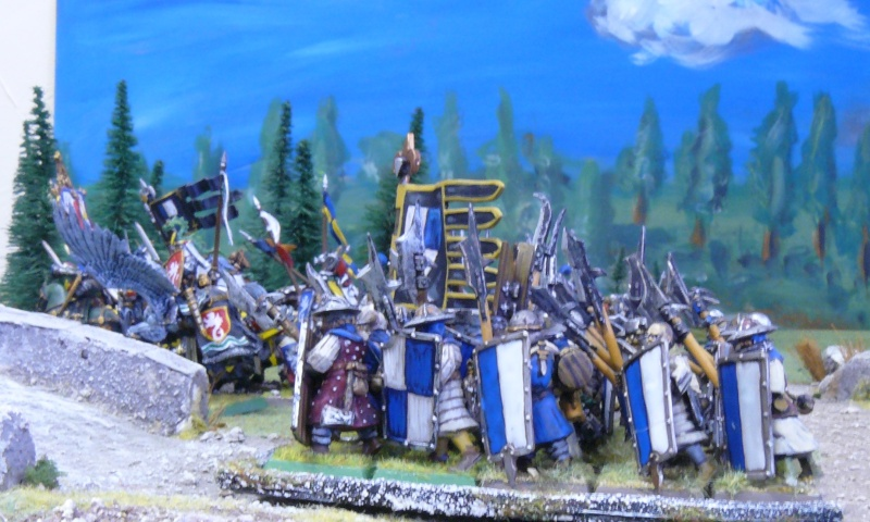Warhammer Fantasy, Galerie de Batailles - Page 4 P1210230