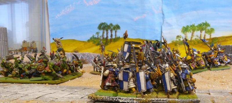 Warhammer Fantasy, Galerie de Batailles - Page 4 P1210372