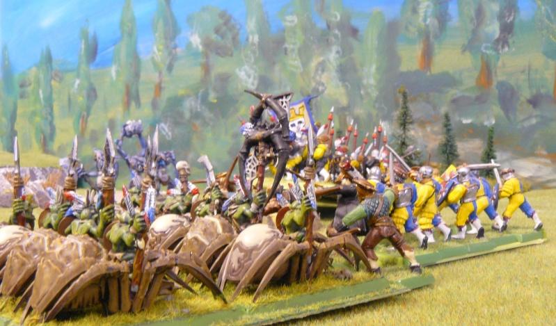 Warhammer Fantasy, Galerie de Batailles - Page 4 P1210375