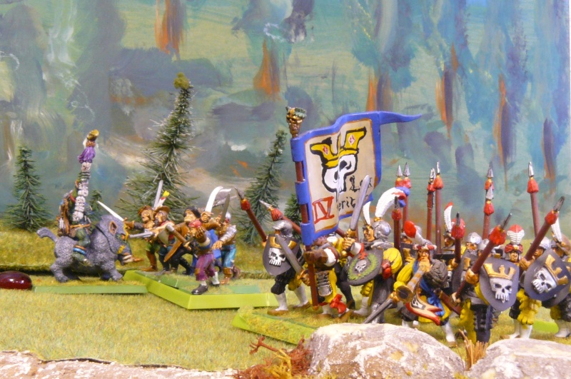 Warhammer Fantasy, Galerie de Batailles - Page 4 P1210376
