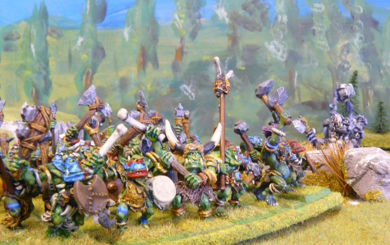 Warhammer Fantasy, Galerie de Batailles - Page 4 P1210378