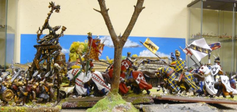 Warhammer Fantasy, Galerie de Batailles - Page 4 P1210627