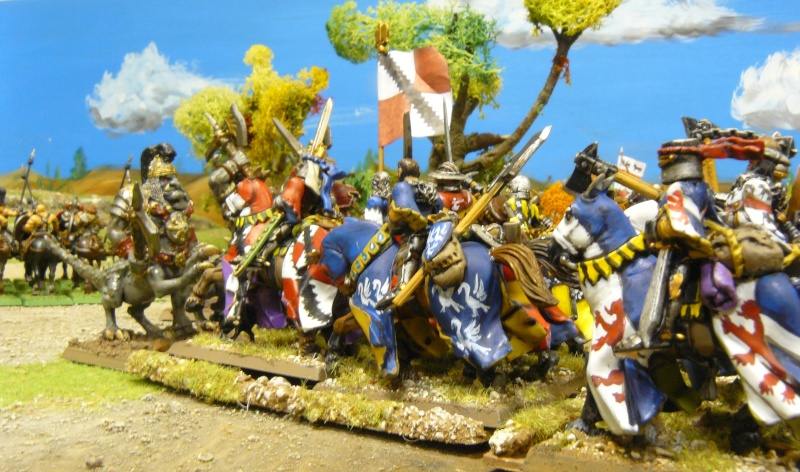Warhammer Fantasy, Galerie de Batailles - Page 4 P1210628