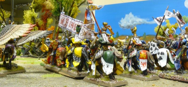 Warhammer Fantasy, Galerie de Batailles - Page 4 P1210629
