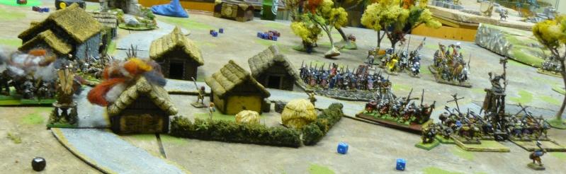 Warhammer Fantasy, Galerie de Batailles - Page 4 P1210634