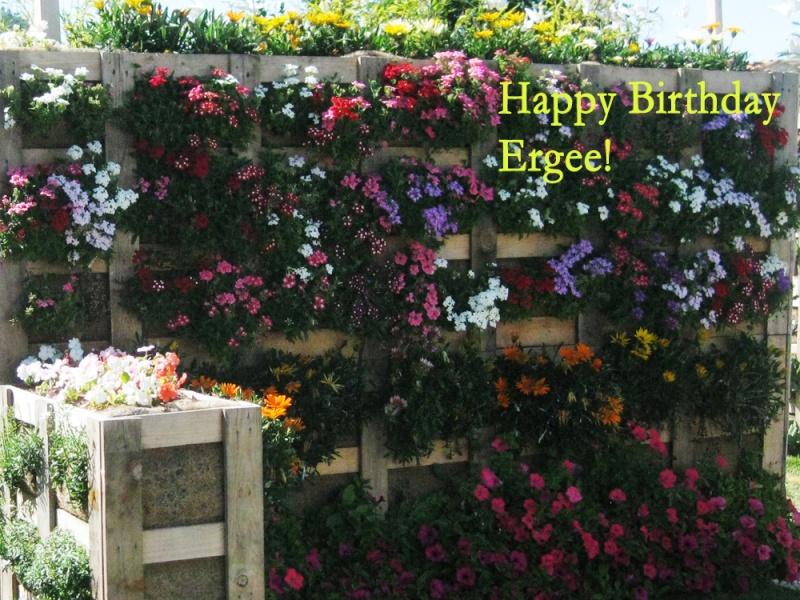 HAPPY BIRTHDAY THREAD Img_6810