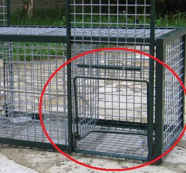 Fabrication Cage à Pie Piegep11