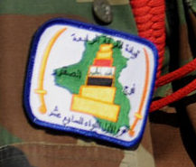 Patches worn by New Iraq Army. 43165711