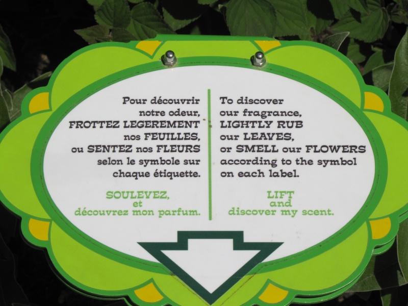 TOUR DE FRANCE 2013 - Page 2 Img_2013