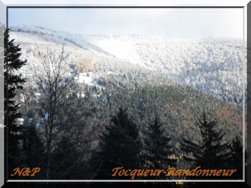 Un ru, un sou-bois, un peu de neige K800_s12