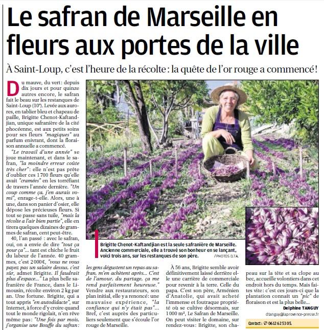 LA VEGETATION MEDITERRANEENNE - Page 7 41_bmp11