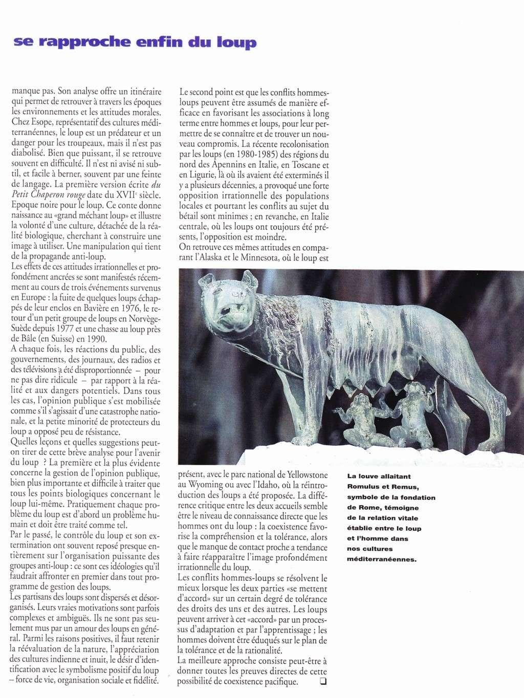 La cohabitation des loups et des hommes à travers le temps  Loup510