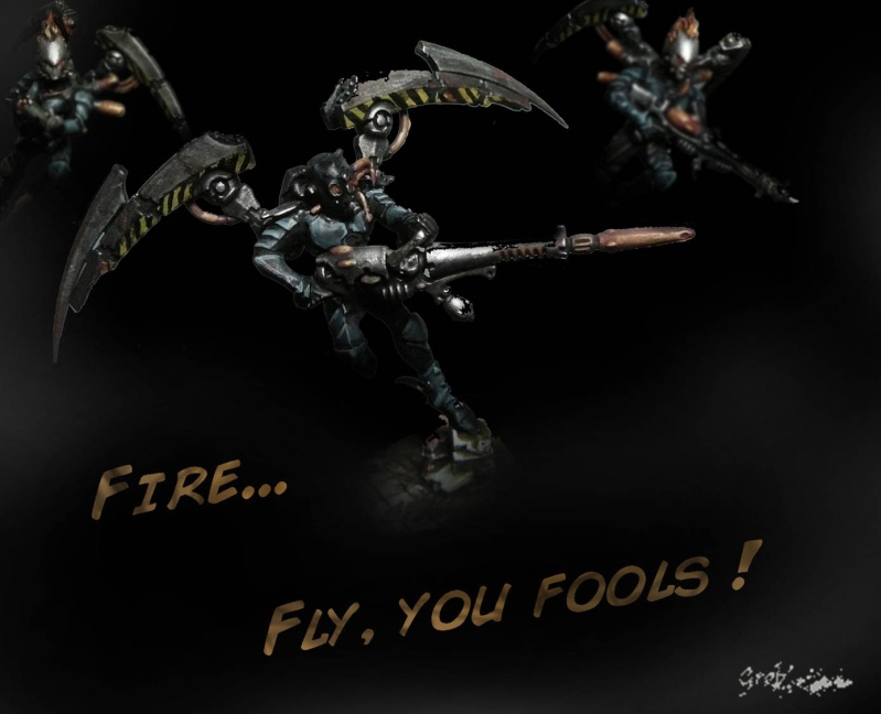 firefl10.jpg