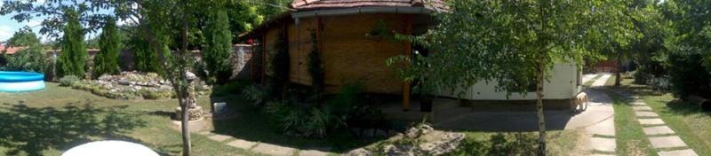 slike iz moje bašte & vrta - Page 3 10982411