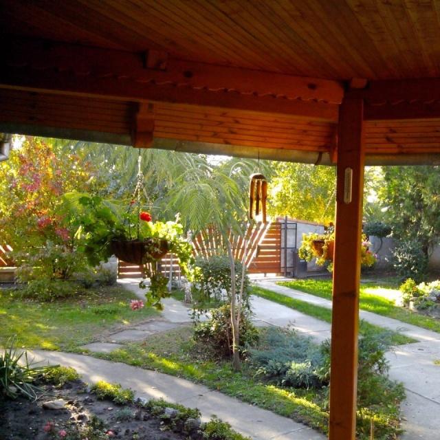 slike iz moje bašte & vrta - Page 3 13822210