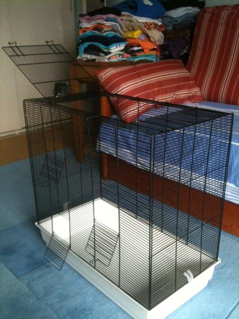 DONNE cage à asso ou FA Photo610