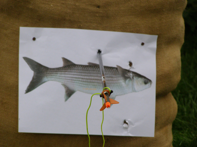 Pêche à l'arc moderne via PLC ! P8170012
