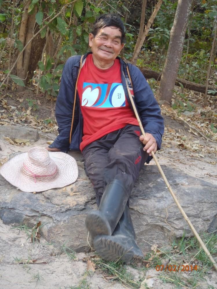 Herbivores thailandais P2071514