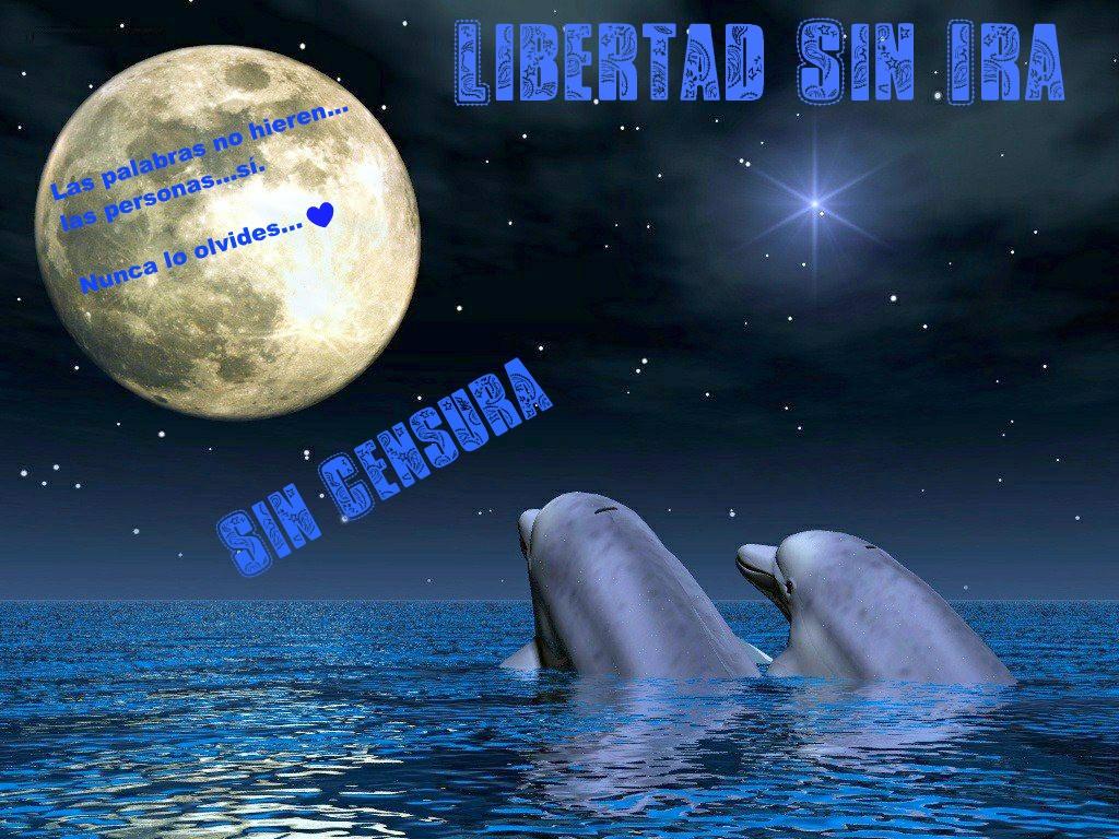 ♥♥   Libertad Sin Ira  ♥♥