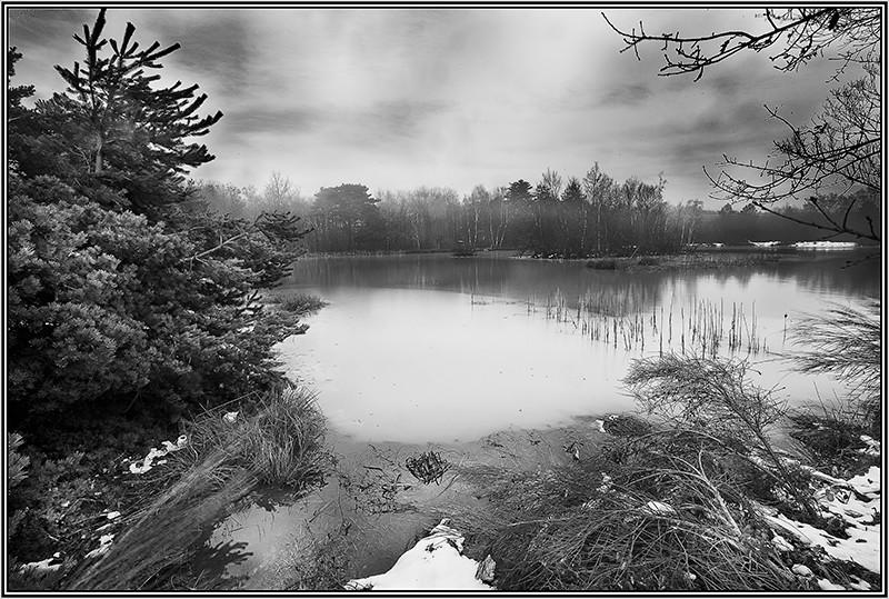 Un étang Photo-10