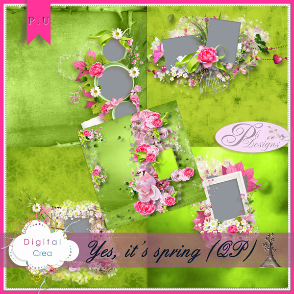 Les news chez Pliscrap - MAJ 23/6 the most beautiful day - Page 3 Plide193