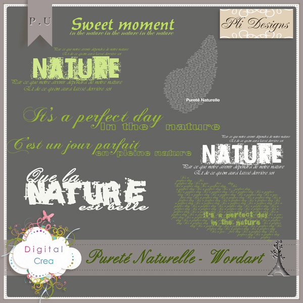 Les news chez Pliscrap - MAJ 23/6 the most beautiful day - Page 3 Plides43