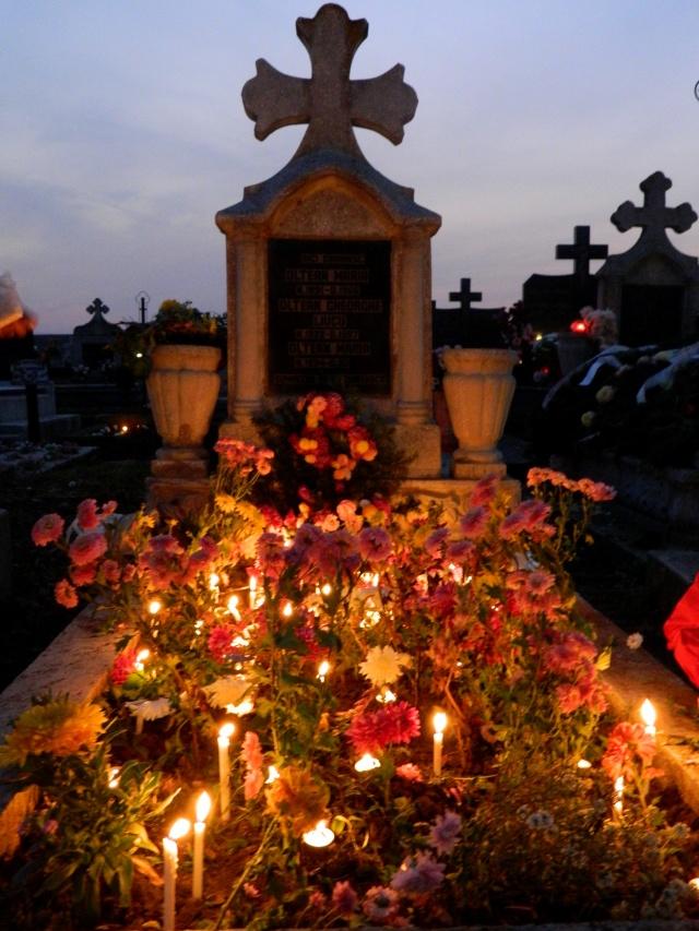 Luminatia - Ziua Mortilor - Pagina 2 Dscn4610