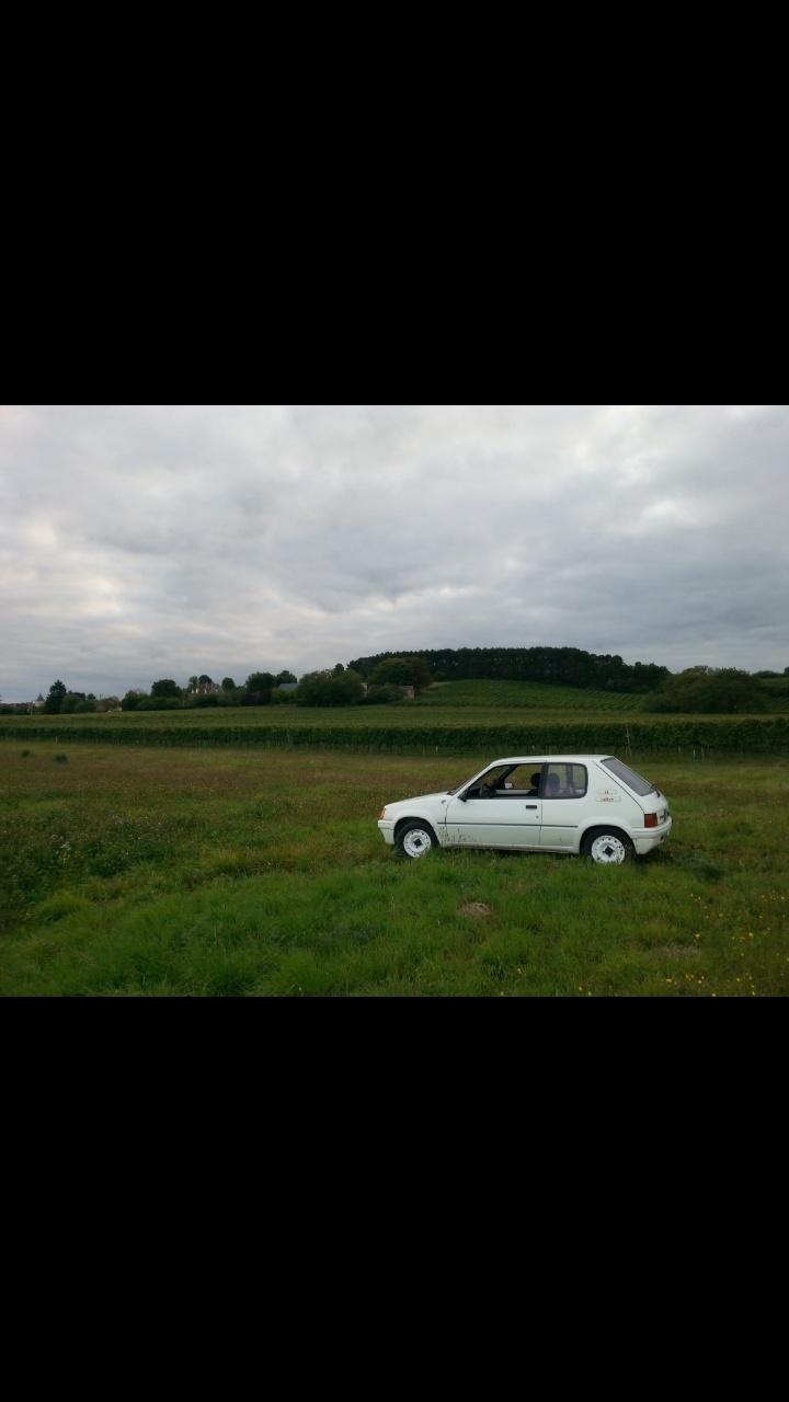 [quentinS]  Rallye - 1294 - Blanc Meije - 1990 Screen10