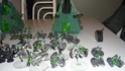 armée necron full paint a vendre P1020813