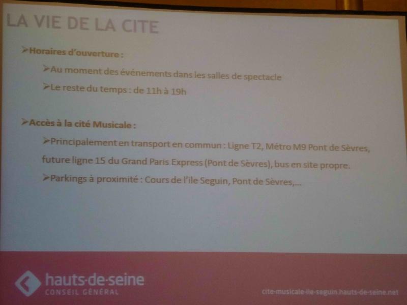 La Seine Musicale de l'île Seguin - Page 13 P1130326