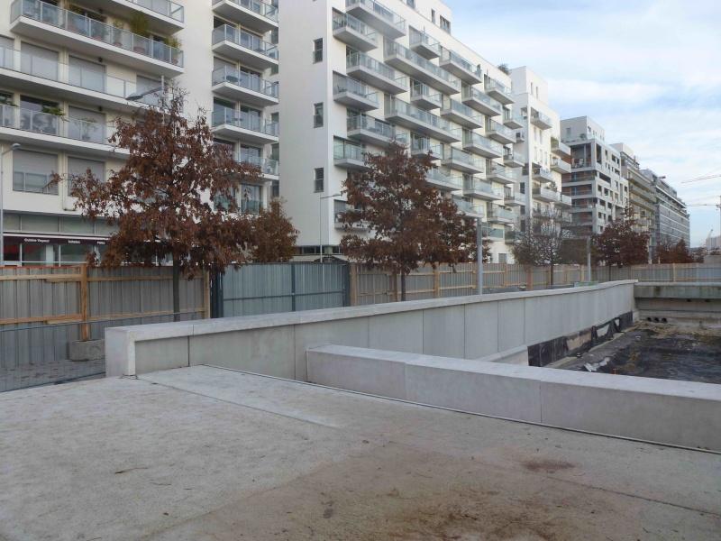 Bassin du Parc de Billancourt - Page 2 P1140413