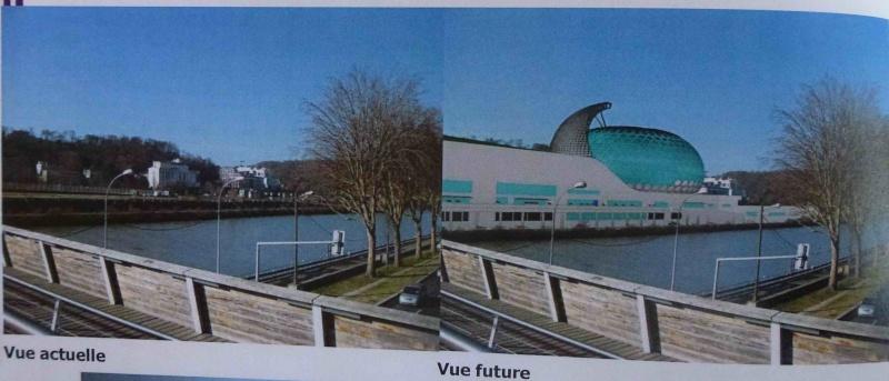La Seine Musicale de l'île Seguin - Page 13 P1140711