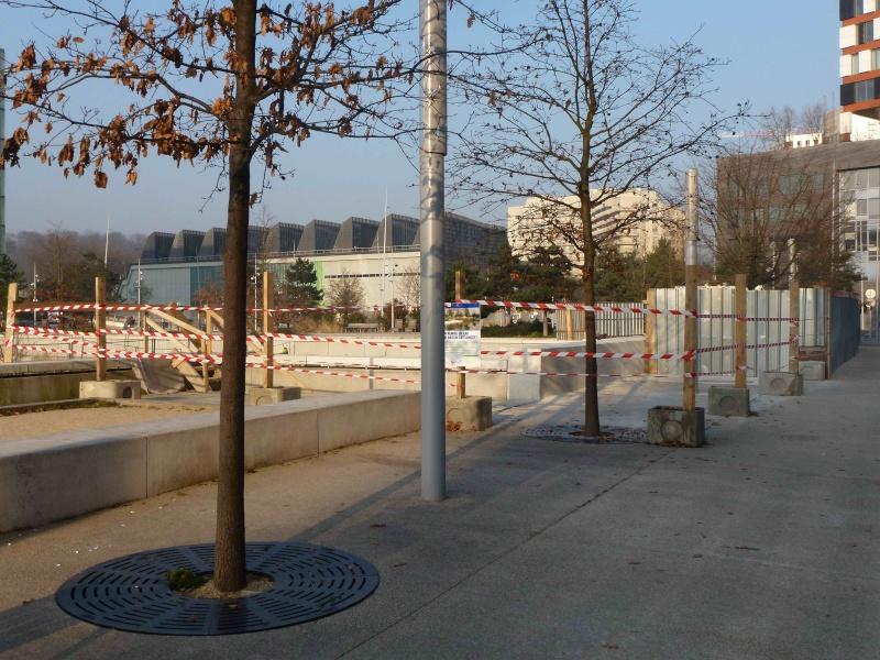 Bassin du Parc de Billancourt - Page 2 P1170610