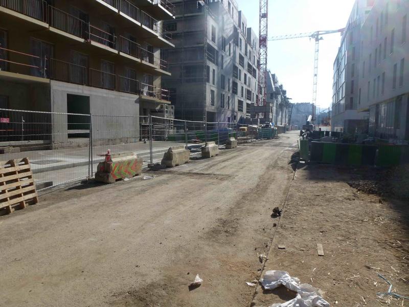 Rue Marcel Bontemps - Page 2 P1170817