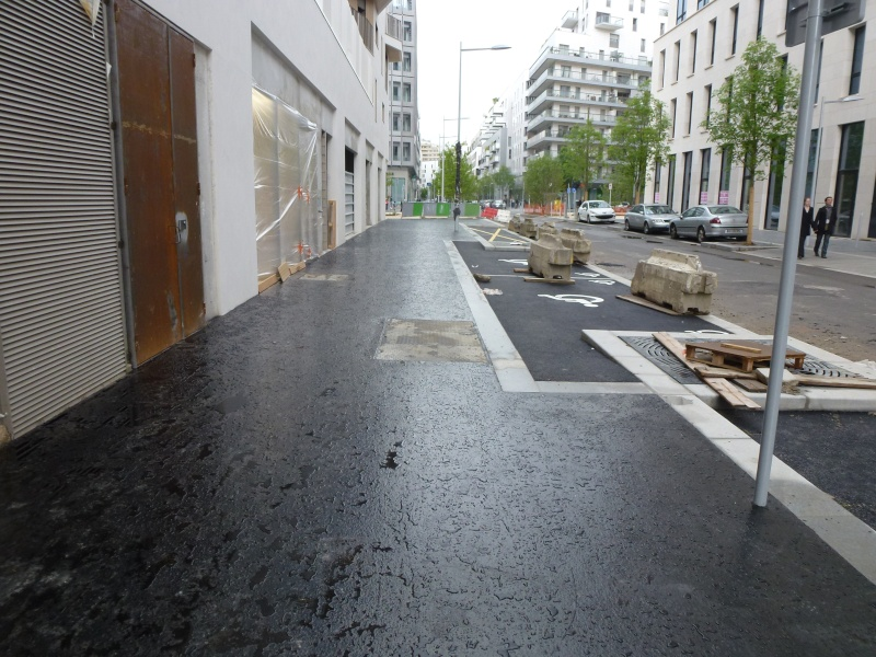 Rue Marcel Bontemps - Page 2 P1190210
