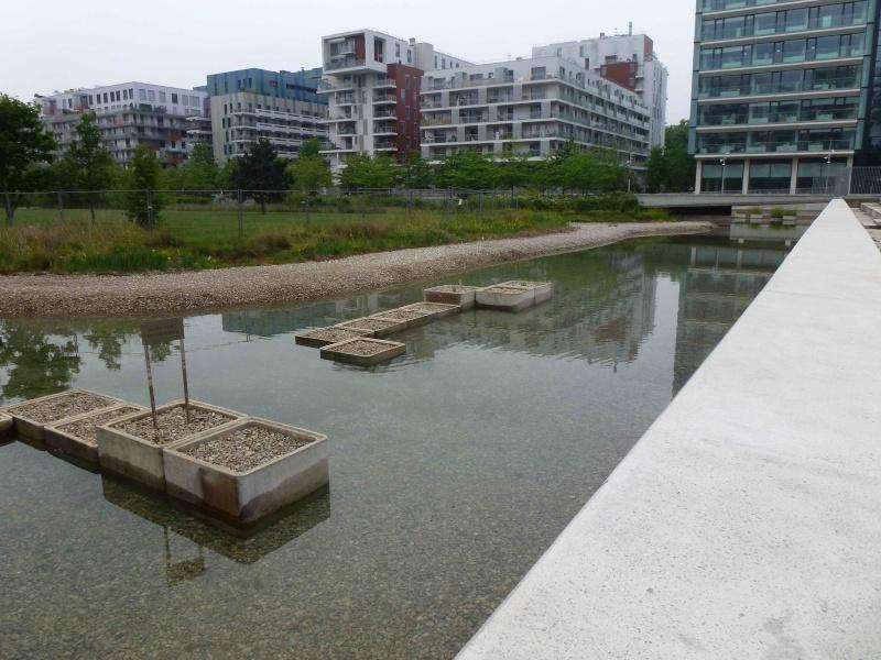 Bassin du Parc de Billancourt - Page 2 P1200015