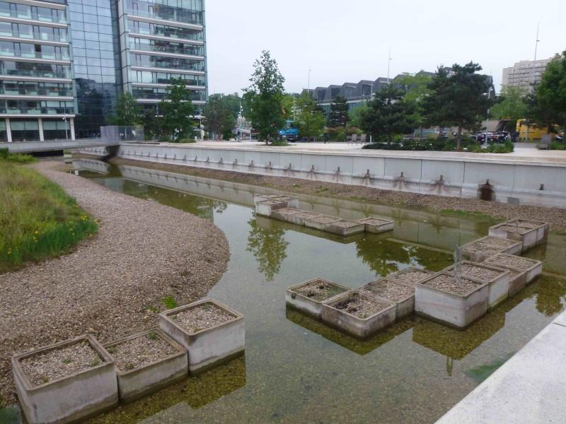 Bassin du Parc de Billancourt - Page 2 P1200224