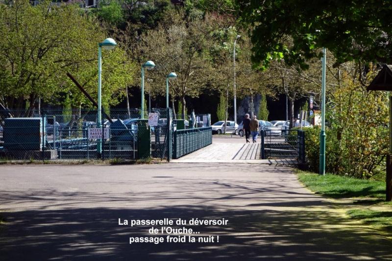 24h de Dijon: le circuit de 3739m comme si vous y étiez 710