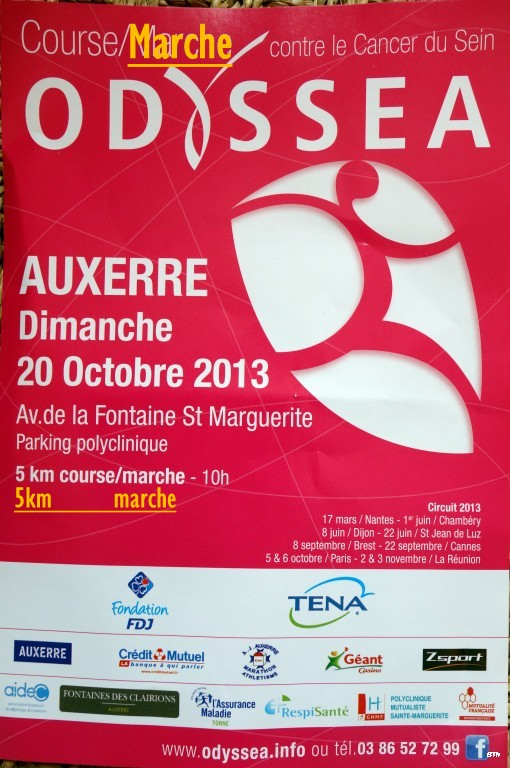 20 octobre Auxerre 2.5 ou 5km contre le cancer du sein. Dsc04512