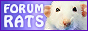 Liens-image vers Forum Rats Frindi10