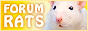 Liens-image vers Forum Rats Frjaun10