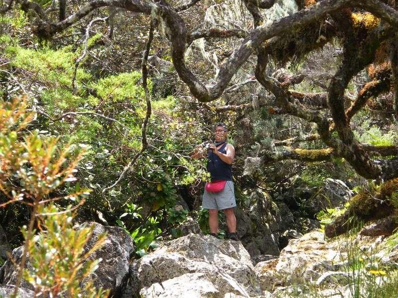 Troisième voyage à la Réunion 16_bra11