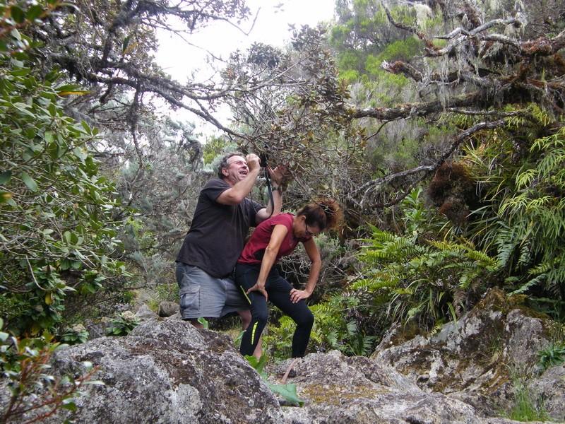 Troisième voyage à la Réunion 17_bra11