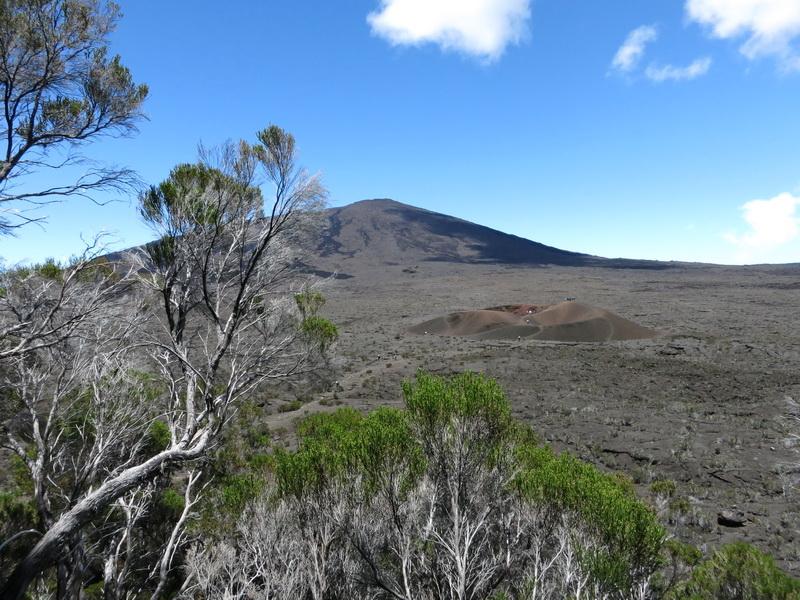 Troisième voyage à la Réunion 1_pito11