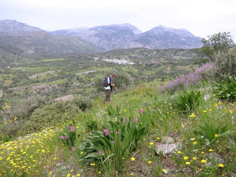 Le centre de la Crète du 3 au 6 avril 2014 22_de_10