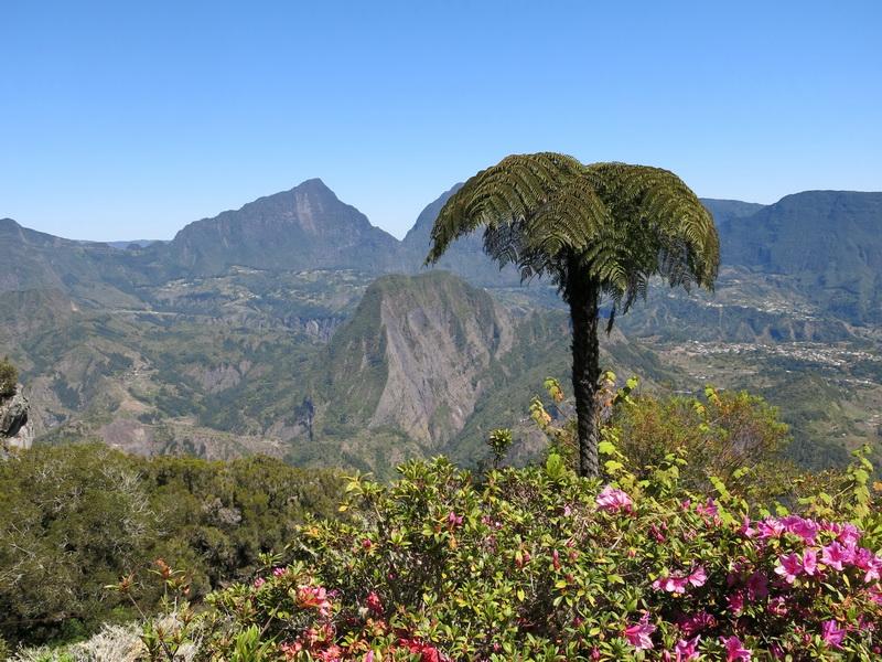Troisième voyage à la Réunion 26_cir10