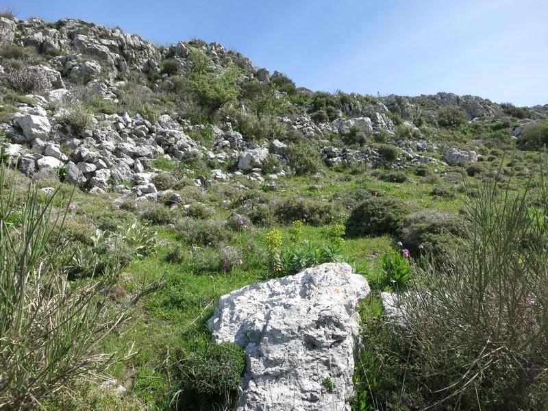 Le centre de la Crète du 3 au 6 avril 2014 29_spi10
