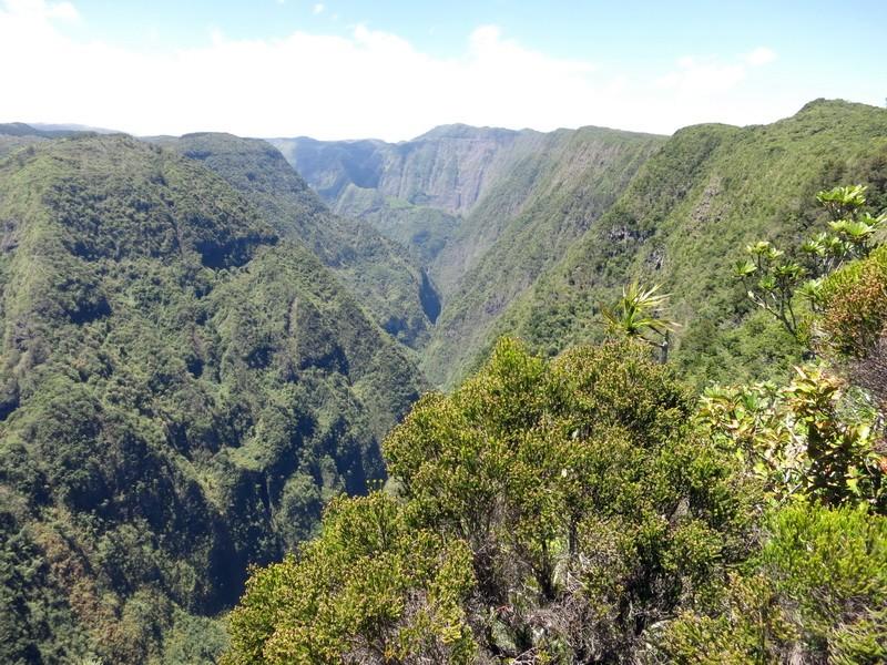 Troisième voyage à la Réunion 31_nor10